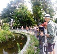 walking-tour-garden